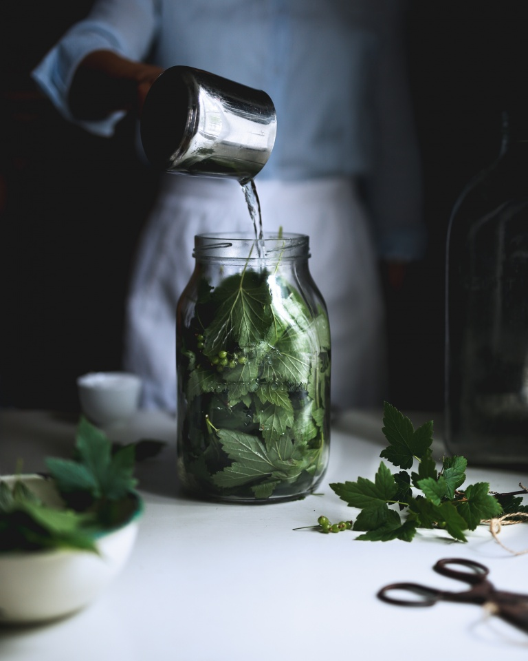 Making blackcurrant leaf juice with fresh leaves