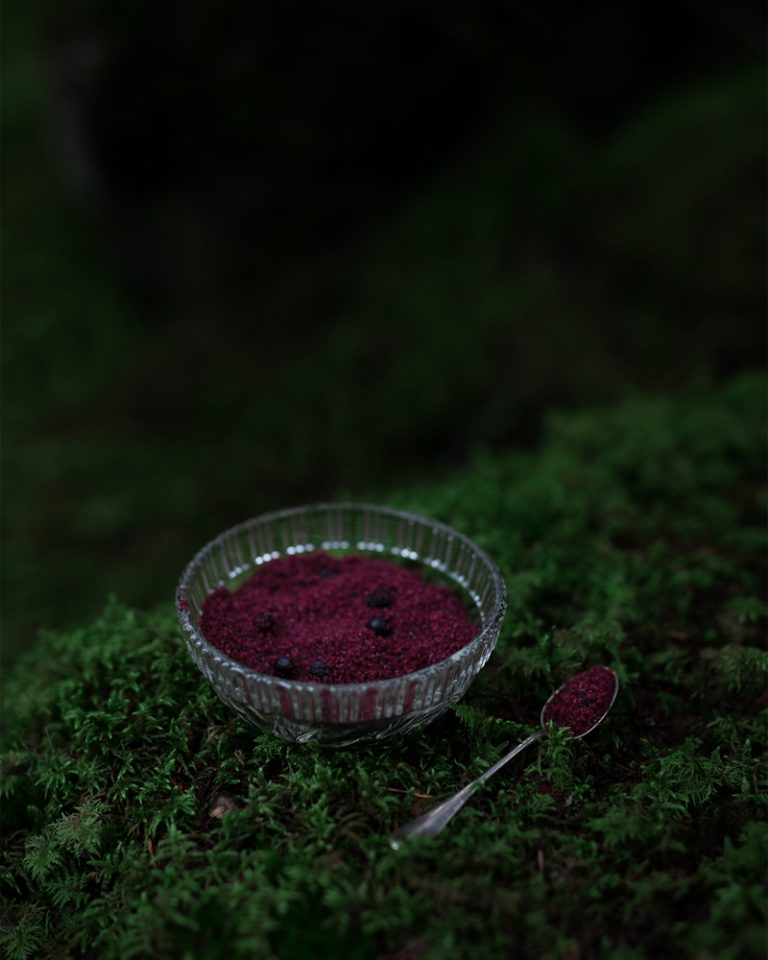 Blueberry xylitol on beautiful moss
