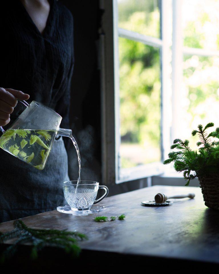 Spruce tip tea
