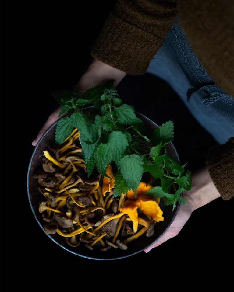 Wild Mushroom Sauce ingredients